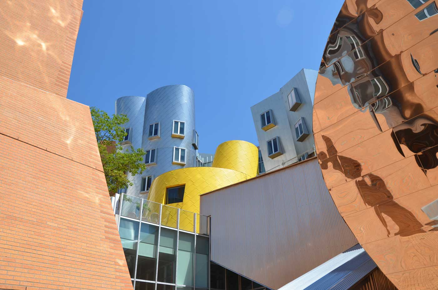 Gehry building at MIT