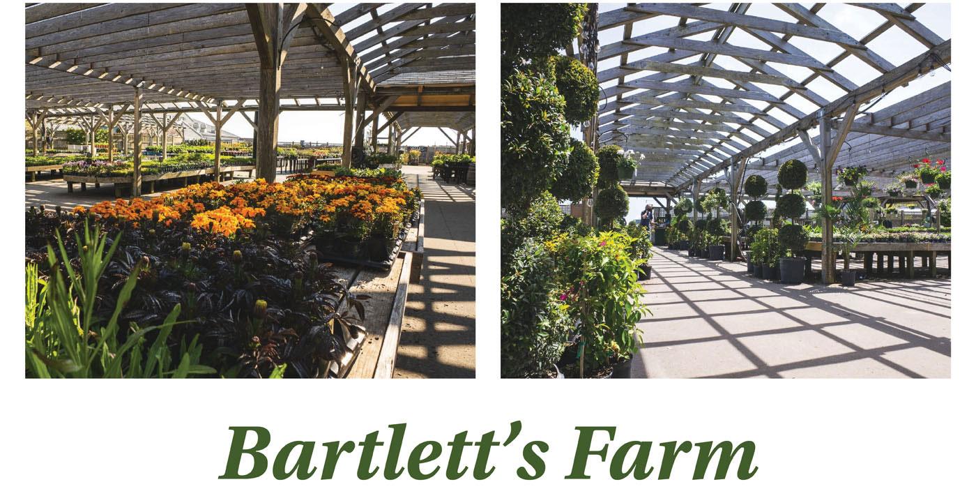 Bartlett's Farm on Nantucket Island