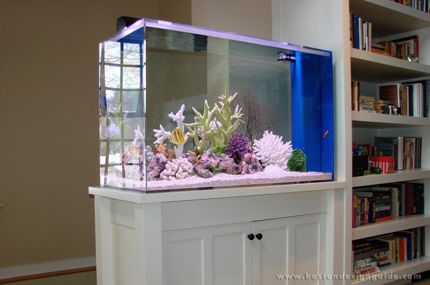Modern interior glass doors - Freestanding In Acton Ma Home 150 Gallon Saltwater Aquarium