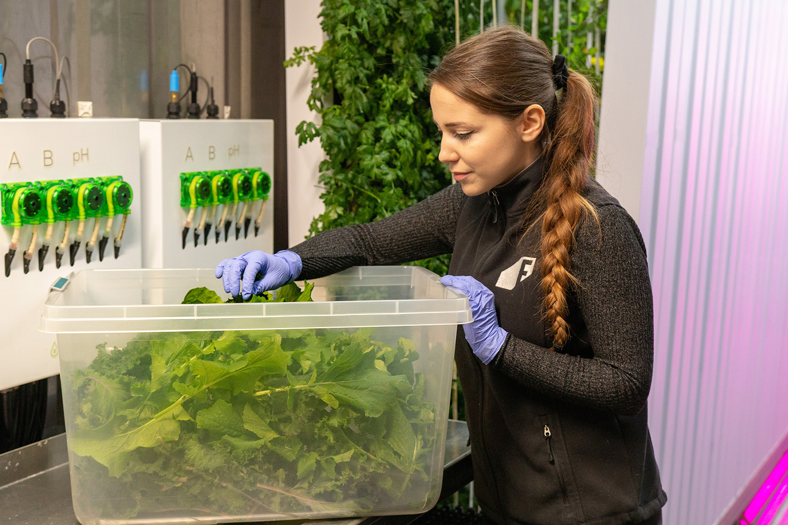 Clarke debuts its Hydroponic Container Farm