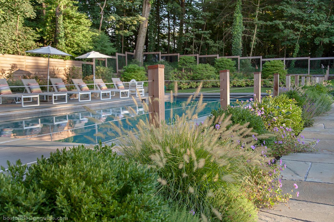 Lush pool garden by Matthew Cunningham Landscape Design