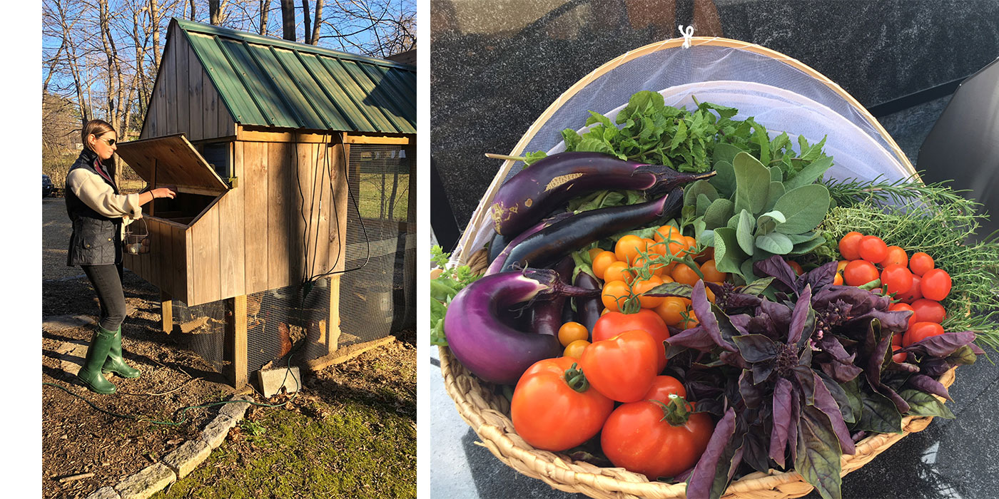 Botanica's fresh vegetables, eggs and chicken coop care