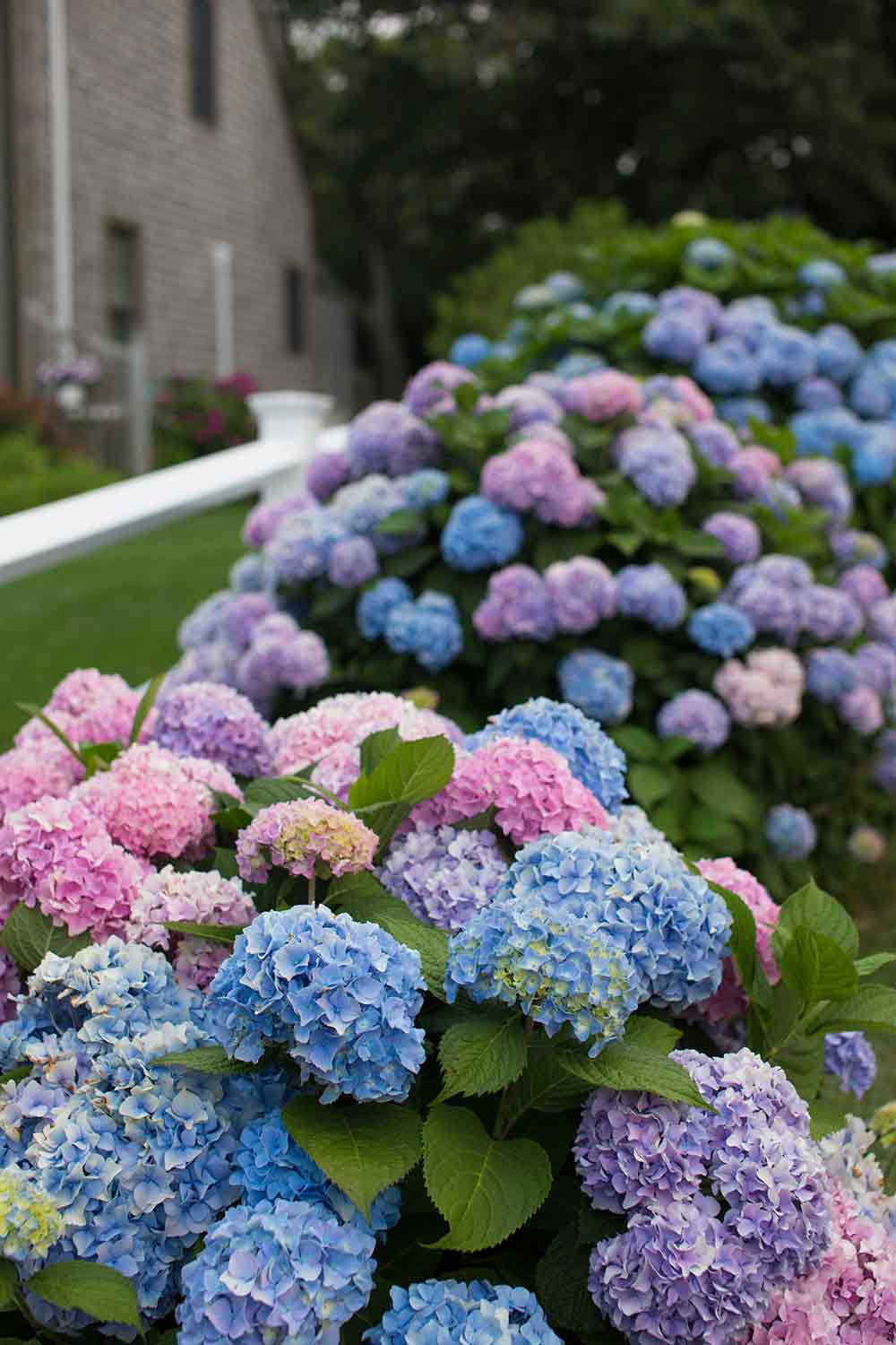 garden tours in New England