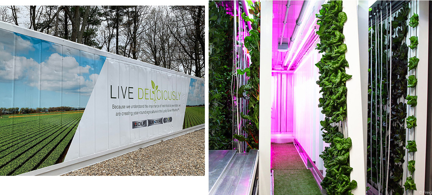 Clarke debuts the first harvest of its Hydroponic Container Farm