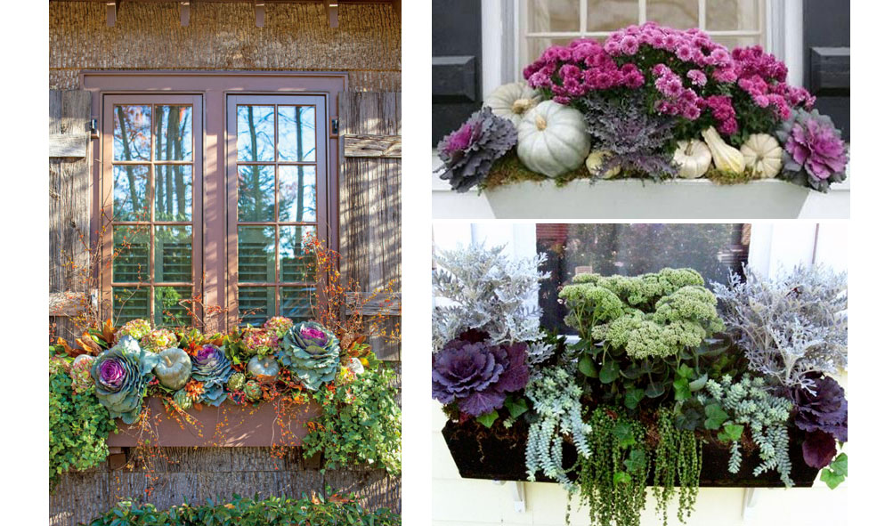 Fall Flower Box Window Arranagement