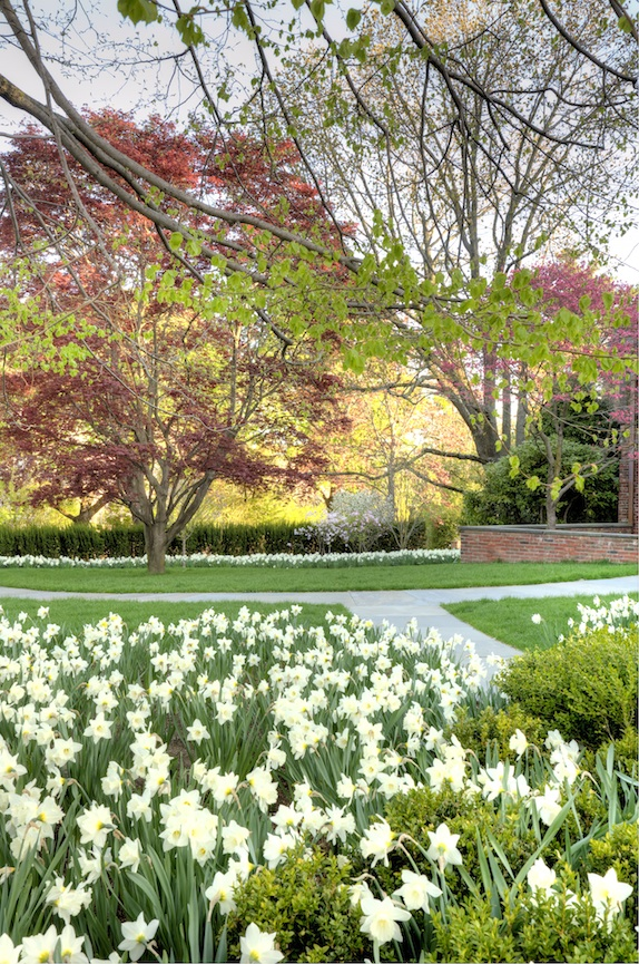 Landscape Collaborative Of New England Landscaping In