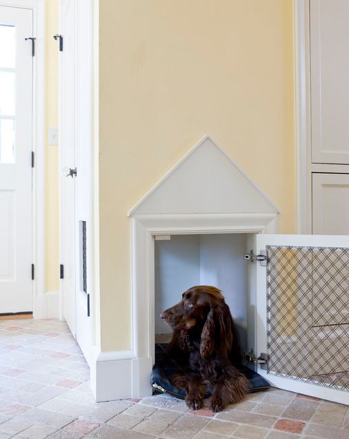 How To Create a Pet-Friendly Home