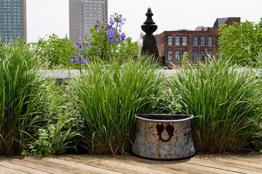 Perfect Summer Rooftops