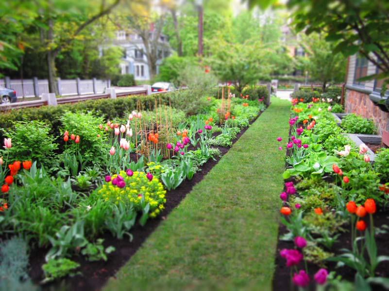 Waking the Gardens