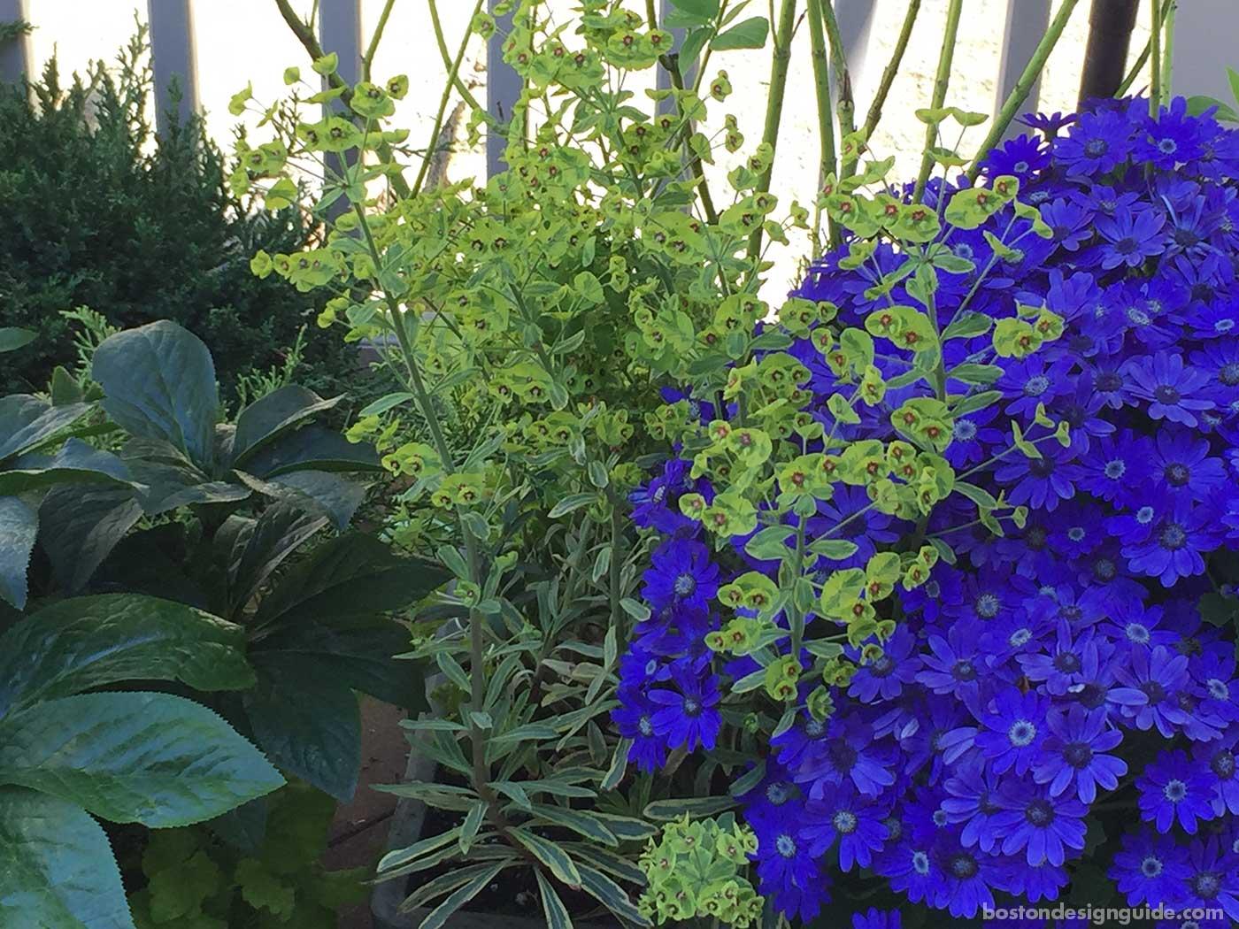 Seasonal tips for your yard