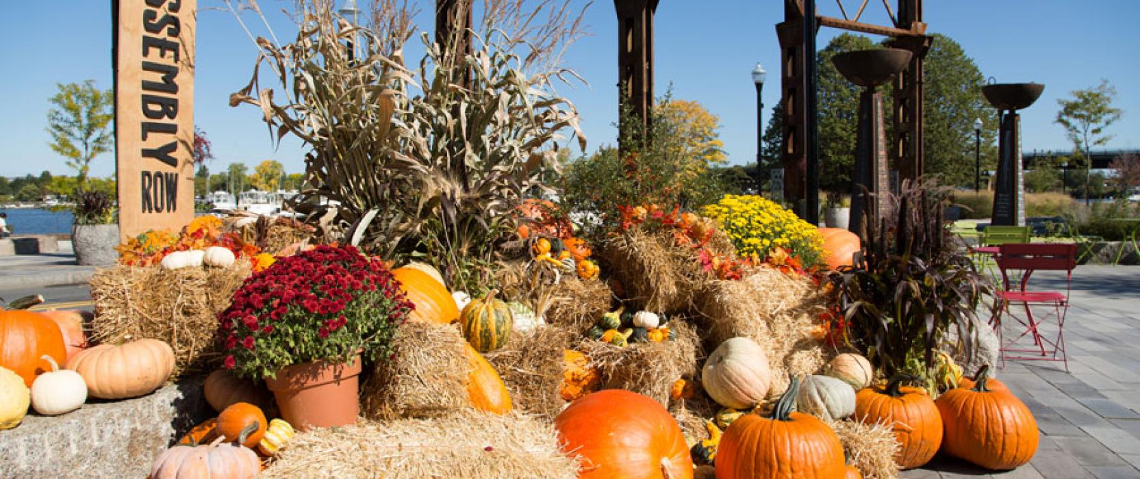Festive Fall Containers