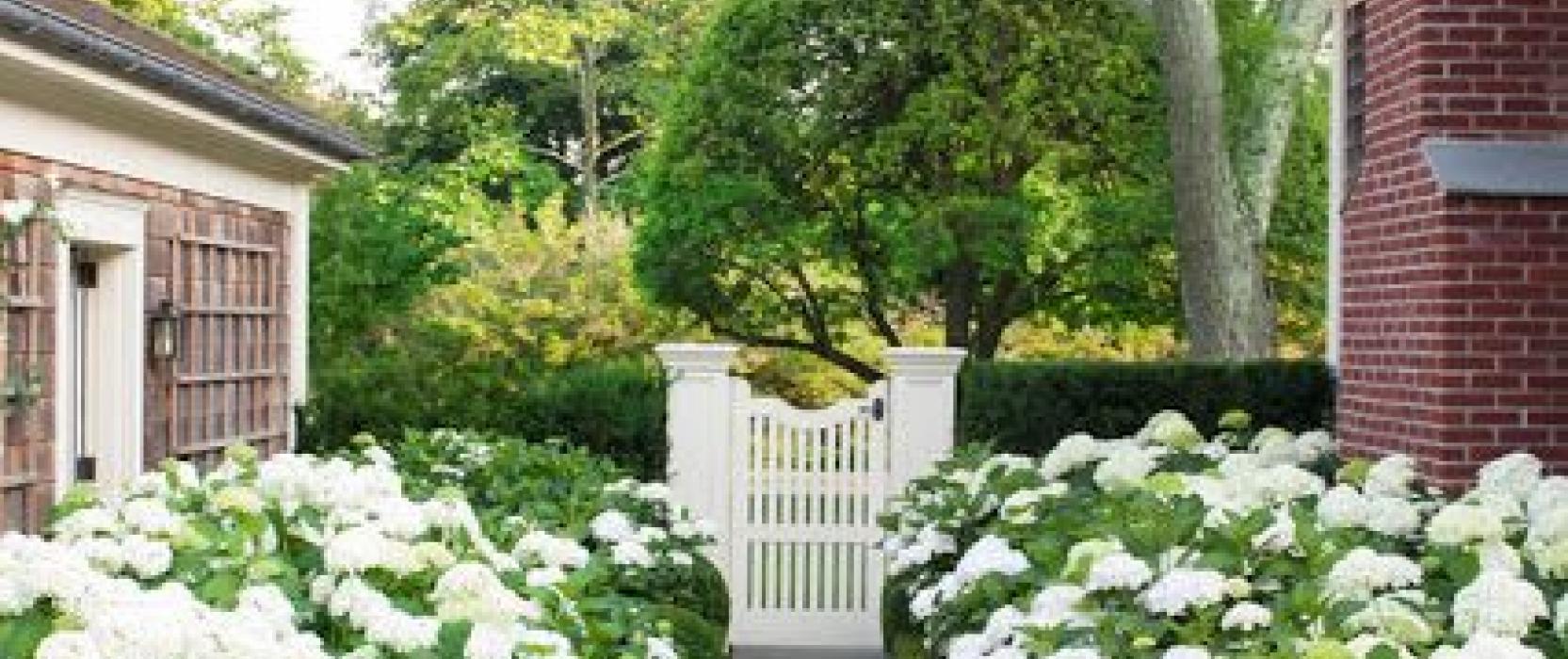In God's Gardens