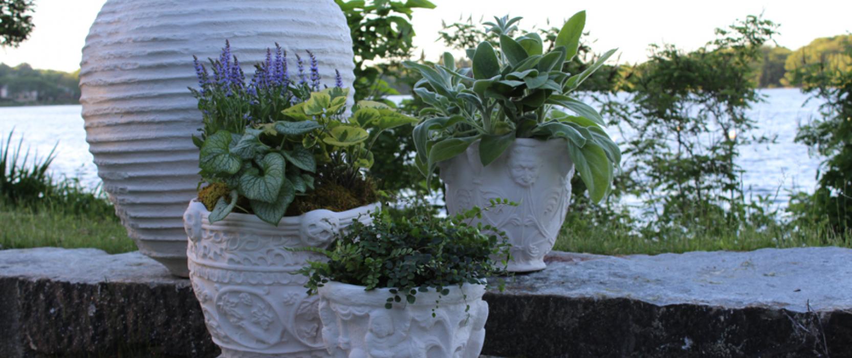 ARTEFACT Home| Garden Sale