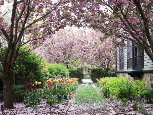 Parterre Garden Services