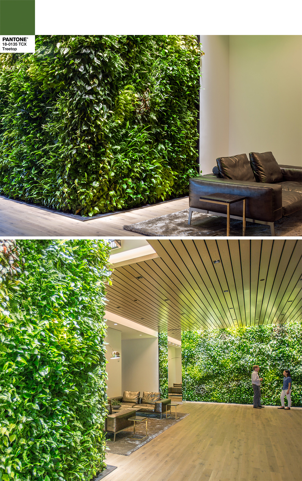 Indoor Landscape Architecture