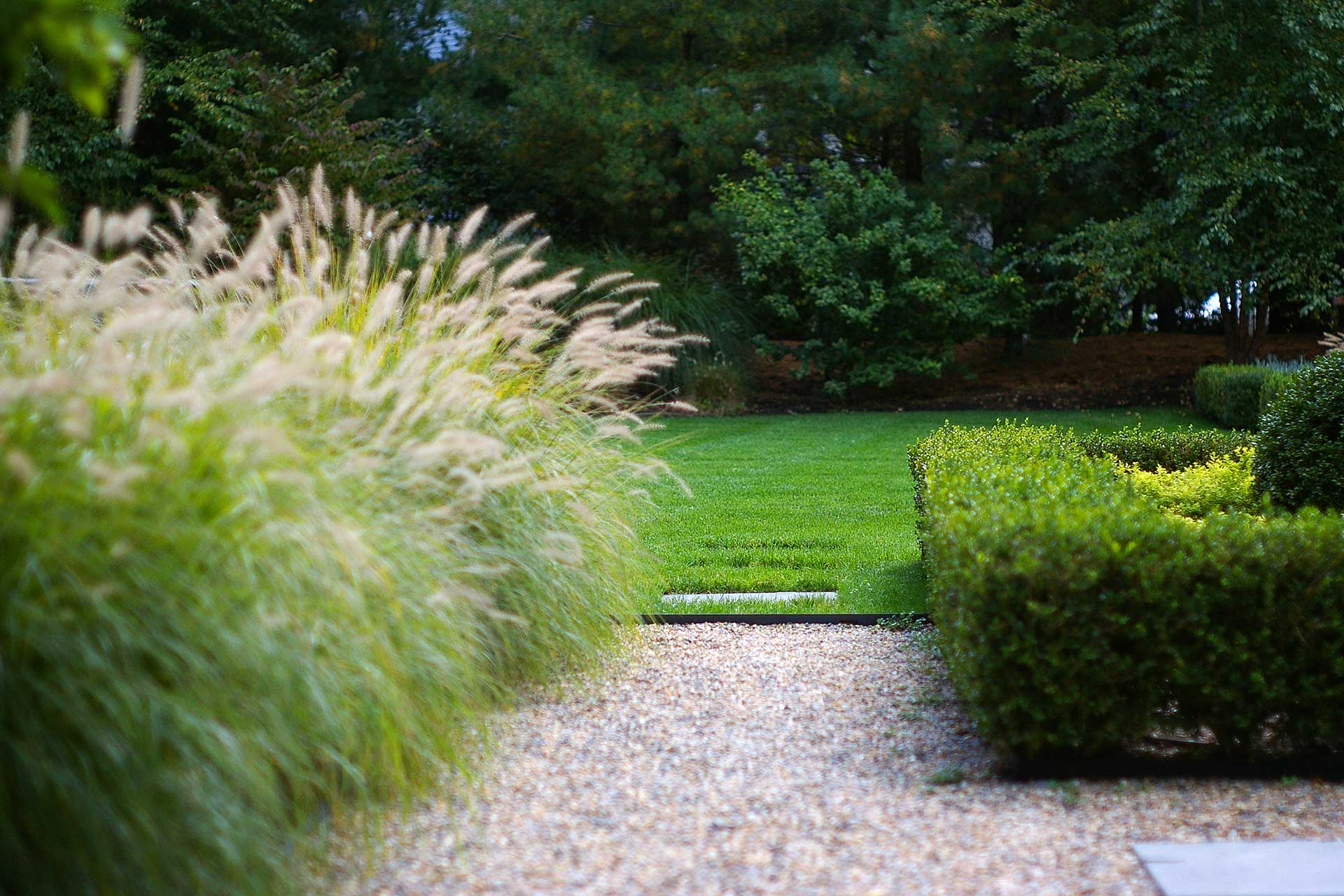 Ornamental grasses in a contemporary garden by a Blade of Grass