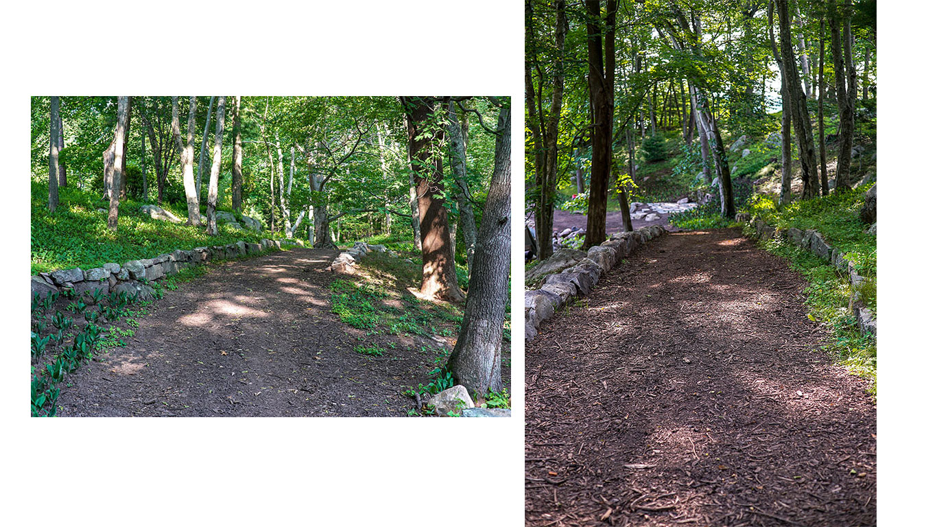 Naturalized New England landscape with walking paths by Landscape Creations